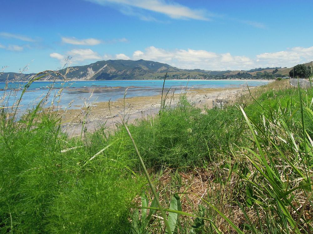 Gisborne Neuseeland