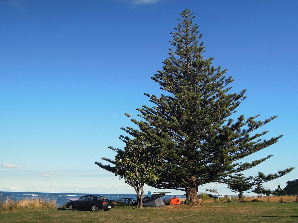 Tatapouri Bay