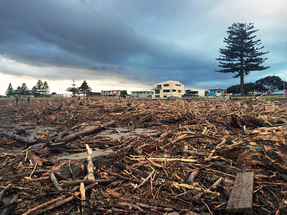 Gisborne-Hochwasser-driftwood
