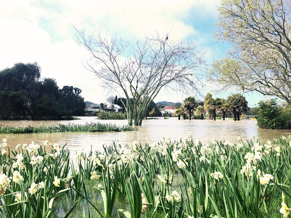 Gisborne-Hochwasser-riverside