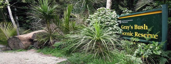 Greys-Bush-Scenic-Reserve-Cover