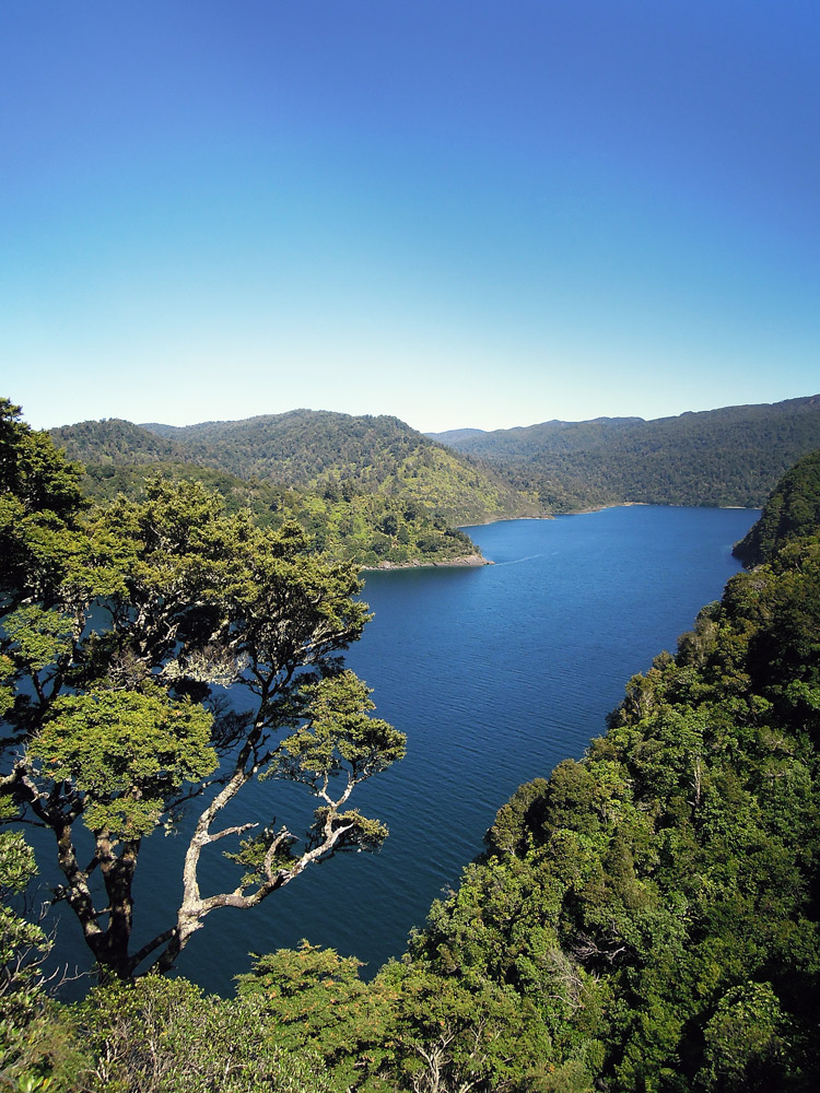 Lake-Waikaremoana-Neuseeland-overview
