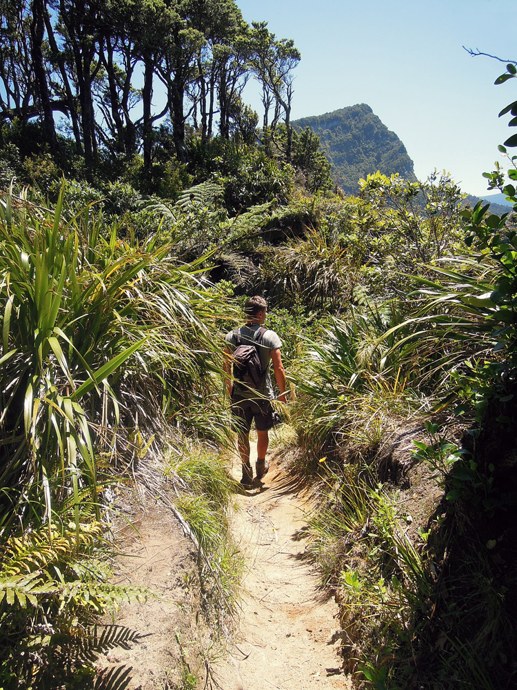 Lake-Waikaremoana-Neuseeland-trekking