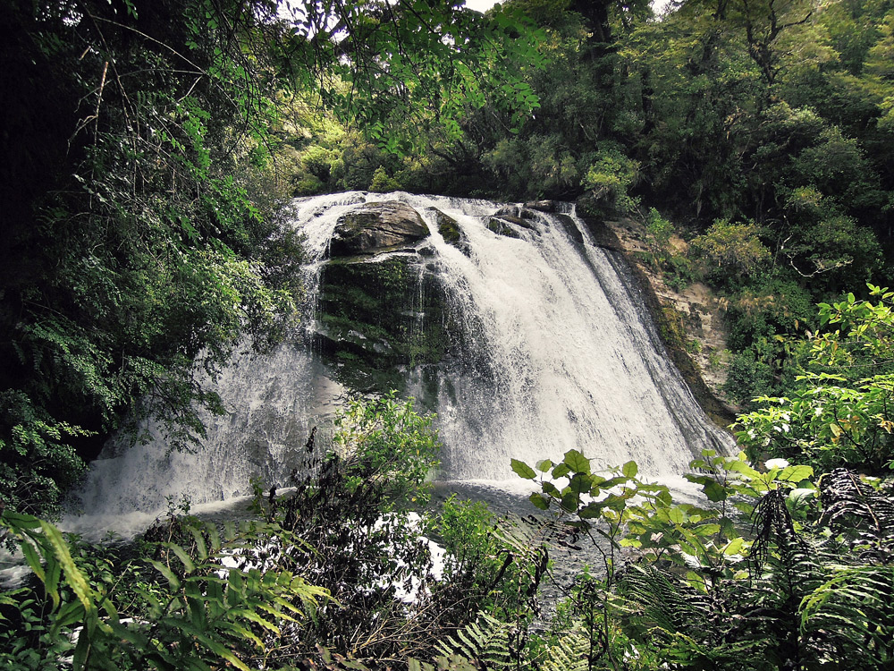 Lake-Waikaremoana-Neuseeland-waterfall-small